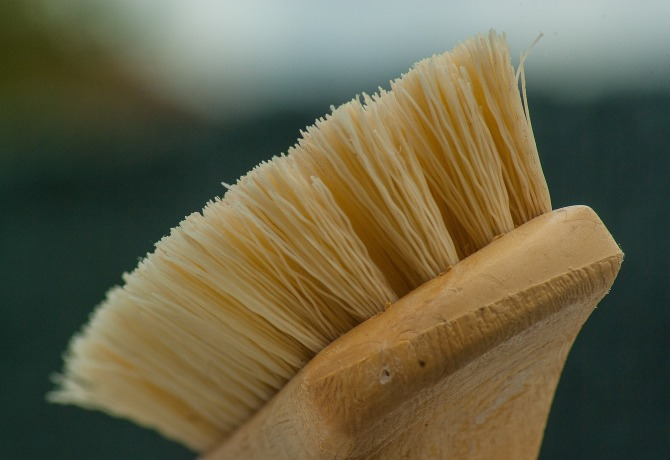 Firm Brush